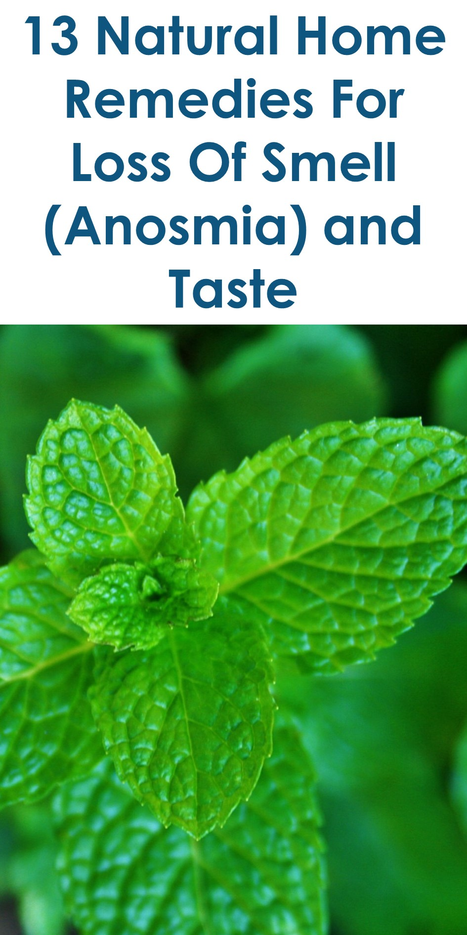 Treatment for loss of taste and smell