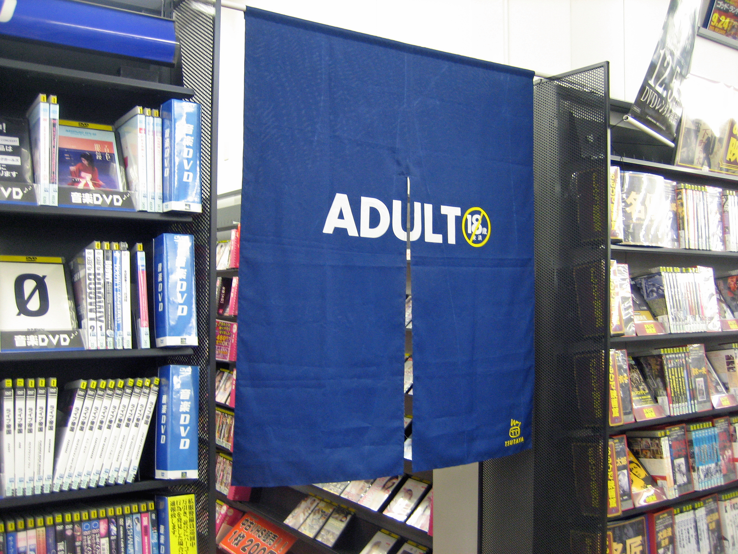 Section adult video