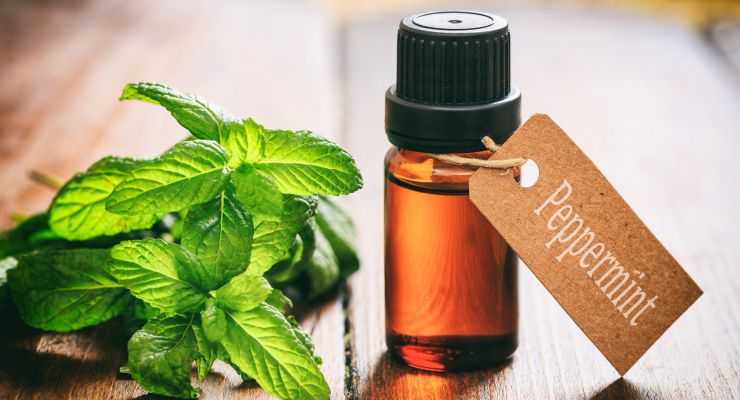 Peppermint oil and sex